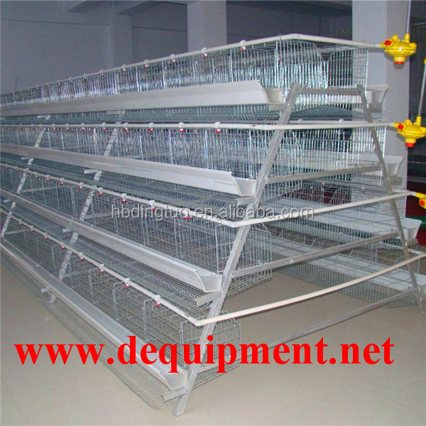 DT 4 tier layer chicken battery cage for Tanzania poultry farm Kenya Nigeria with good price layer cages
