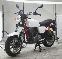 New model cheap price gas powered sport 125cc motorcycle
