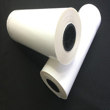 Chinese Tunsing Textile Fabric Garments Label Copolyester PES Hot Melt Self Adhesive Heat Transfer Glue Film
