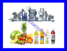 Small Scale Fruit Juice Processing Plant