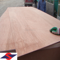 Linyi 2.9mm Plywood factory