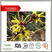 Top Quality Witch Hazel Extract, Tannin Extract , Tannin Extract Powder