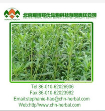 low price, hot selling organic liquid stevia