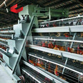 poultry equipment suppliers in south africa