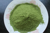 BIO PURE Green Tea organic Matcha tea powder high grade EU Standard