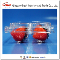 accept custom order plastic fruit tray packaging with divider for strawberry