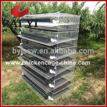 Big Discount Fast Selling Quail Farm Layer Cage Kanya Wholesale