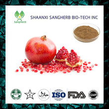 New promotion pomegranate extract juice powder for xcmg spare parts