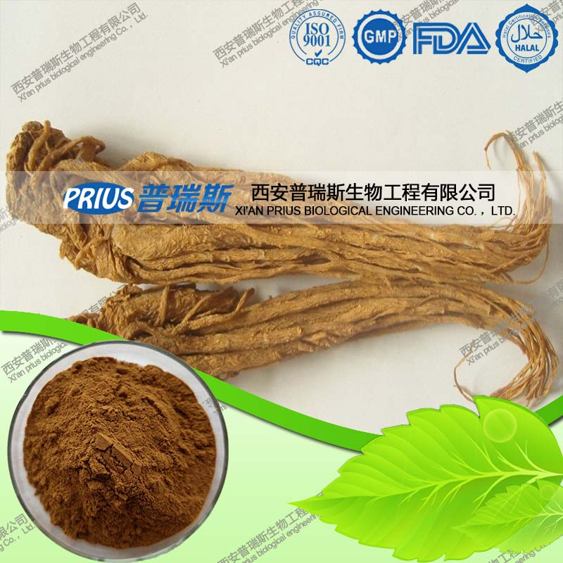 Best Price Hot Sale Natural Angelica P.E. Extract