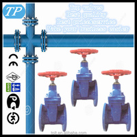 DIN resilient seat non rising stem flanged gate valve gate 6 inch gate valve
