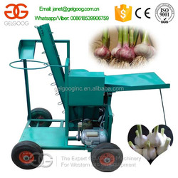 Wet Garlic Root & Stem Cutter Machine/Fresh Garlic Tail & Stem Cutting Machine/Garlic Cutting Machine