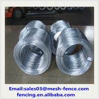 (ISO9001) Electro Galvanized/ PVC Coated/Black Annealed Metal Wires
