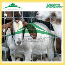 Animal fence/cattle fence/sheep wire mesh fence(china factory)