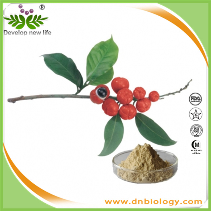 High quality guarana powder 10:1/guarana extract with best Guarana price ,