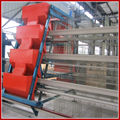 Automatic Chicken Farming Equipment For Sale
