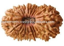 Exclusive Certified 21 mukhi Holy Rudraksha Bead From Nepal