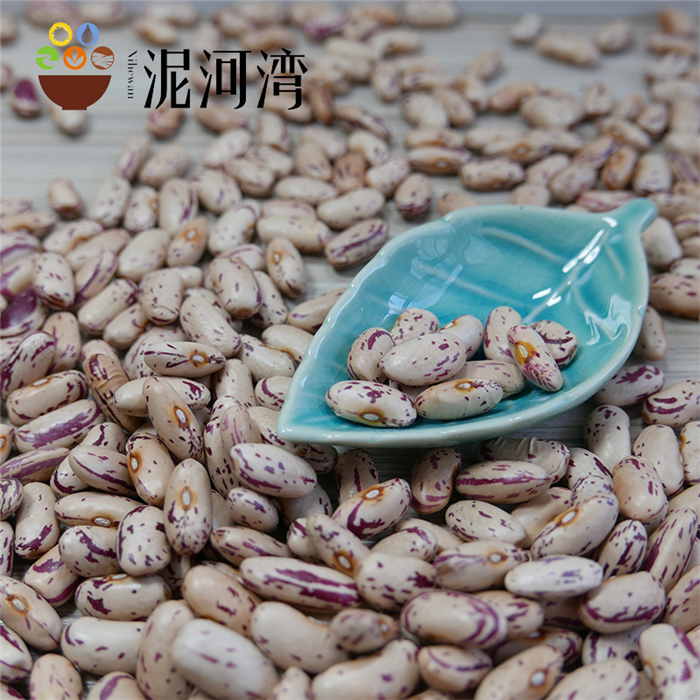 Light Speckled Kidney beans (LSKB) Pinto beans/Sugar beans