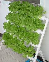 hydroponic growing systems garden green houses