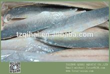 Frozen Mahi Mahi Fish Food FILLET SKIN-ON