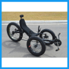 Big Power Beach Cruiser Type Fat Tire Recumbent Trike