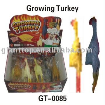 Growing Turkey toy