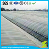 Hot Sale Agriculture Greenhouse For Sale
