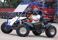 250cc Double Seater Go Kart For Sale