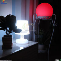 led plastic decorative lighting waterproof led lamp for hotel/home/event