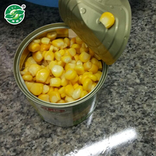 Advanced equipment pass KOSHER organic canned sweet corn food