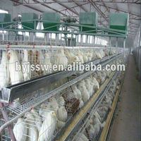 High Quality Pigeon Cage ( factory price )