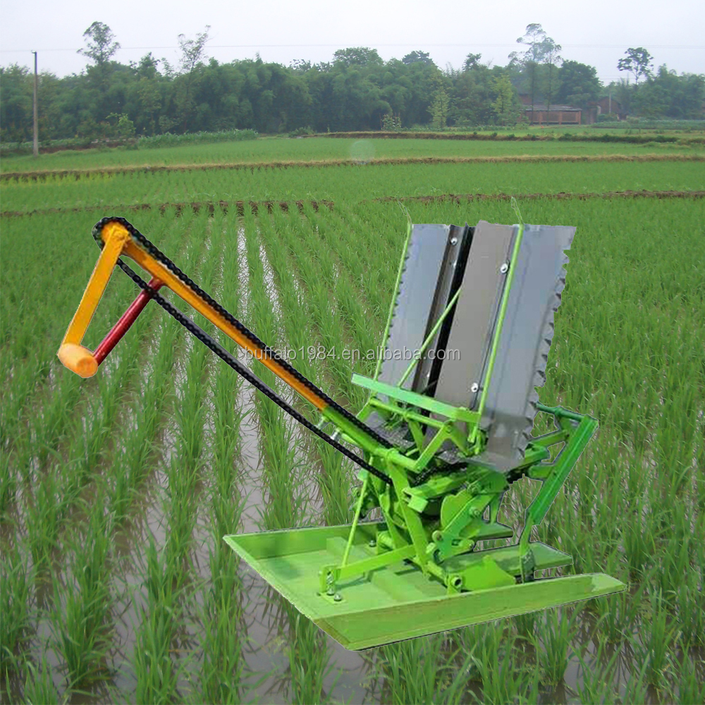 Slaes Seed Planter Manual Rice Planting Machine