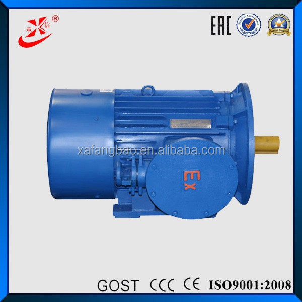 Induction Type Motors 440v Electric Motor 90kw Explosion Proof ERC,CU-TR Certification