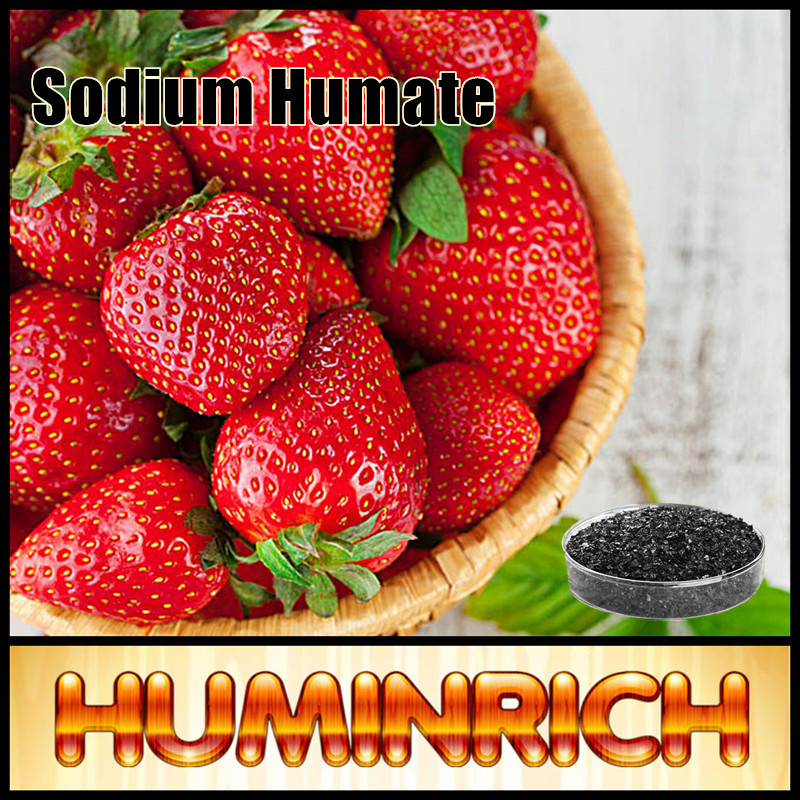 Huminrich Humate Blended And Balanced Hydroponic Nutrients 60% Content Sodium Humate. I.E. Flakes