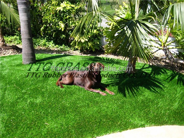 eco-friendly harmless no odor outdoor pet artificial grass best price