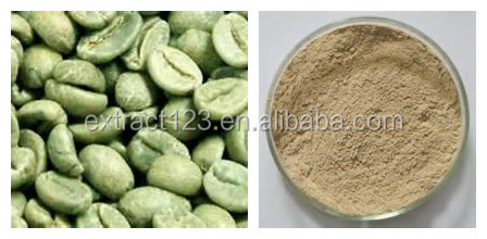 Manufacturer sales green coffee bean extract weight loss capsule