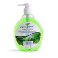 Natural Formula Green Anti-Bacterial Liquid Hand Soap