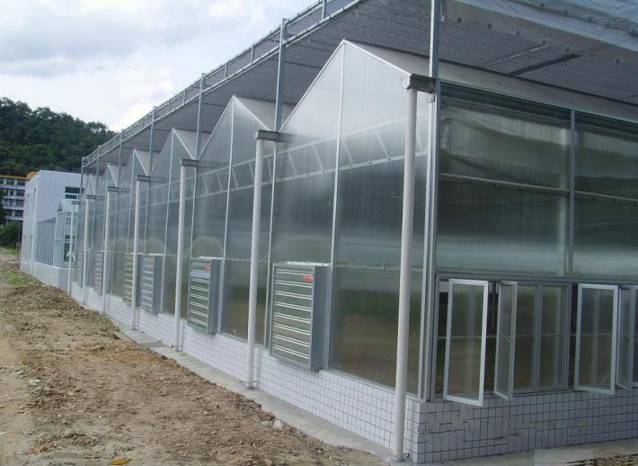 XINHAI Strength, heat insulation,flame resistance greenhouse with polycarbonate sheet