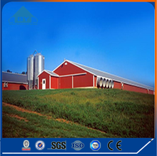 Large Steel Structure Pakistan Poultry Farm Design