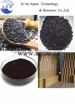 Favorable price best quality Black Rice Extract Anthocyanidins10~30% in bulk supply,welcome inquiries