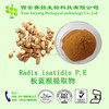 Factory Supply Radix Isatidis P.E/Radix Isatidis Extract