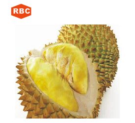 New arrival fresh frozen durian fruit powder/herbal extract/plant extract