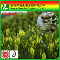 Natural camellia sinensis seeds extract tea saponin 98%