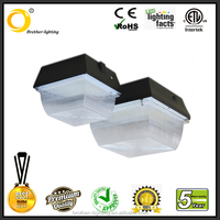 China one of the best supplier DLC LED Canopy Light 60W for gas station Lighting