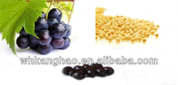 Grape Seed &Soybean Extract Softgel distributor