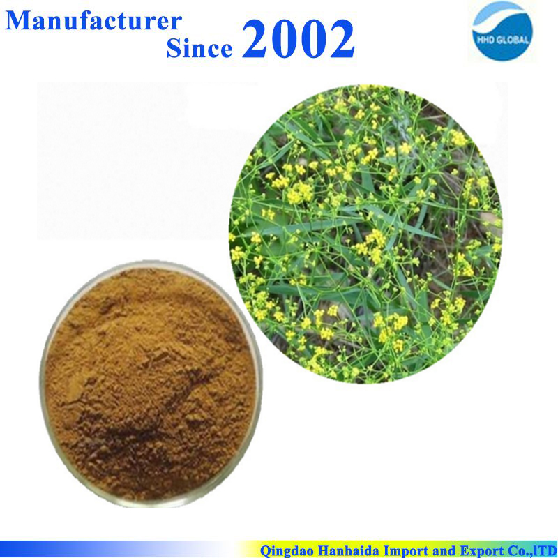 Factory Supply High Quality Pure Bupleurum Falcatum Extract