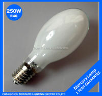 Poland market high preesure mercury vapor lamp 250w