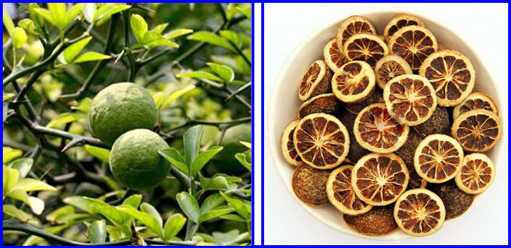 Natural Grapefruit or Citrus Extract 98% Naringin Powder
