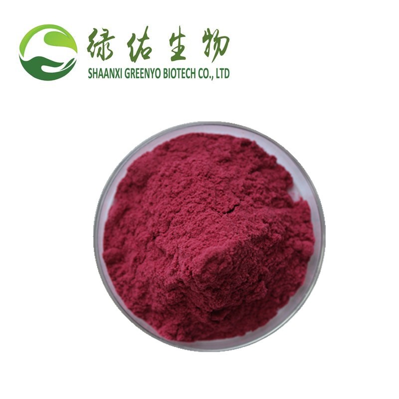 High Quality Cranberry Extract Powder Cranberry Fruit Juice Extract