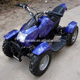 2015 NEW 1000W 800W 36V Mini Electric ATV Electric Quad for Kids