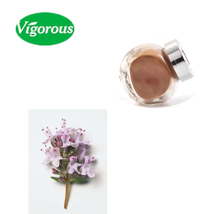 Natural Thymus vulgaris plant extract / thyme p.e/thyme leaf extract